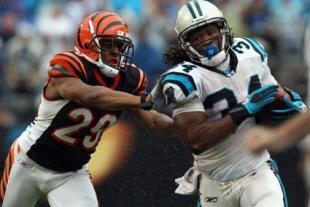 Cincinnati Bengals v Carolina Panthers